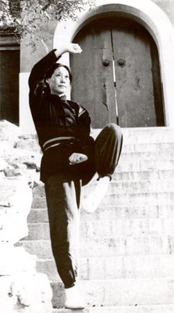 Page personnelle yugui liu accueil for Maitre art martiaux chinois
